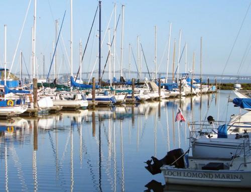 Loch Lomond Marina EIR
